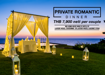 Private Romantic Dinner with Seaview